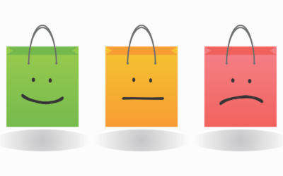 The Power of Emotion on Purchasing Behavior