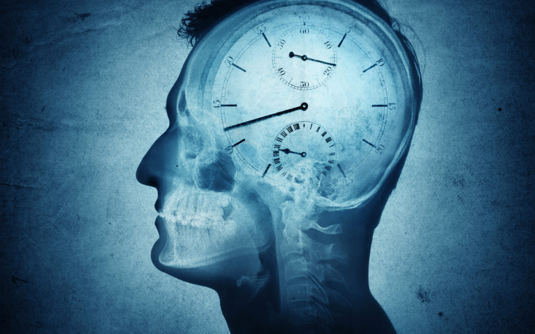 Inside Mark's Head: Musings on Time Management, Critical Thinking, Effective Learning, and More